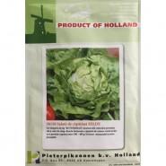 Salata HILDE,10 g.